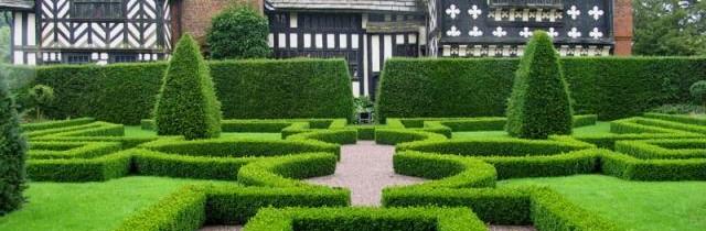 zaprojektowany ogród przed domem